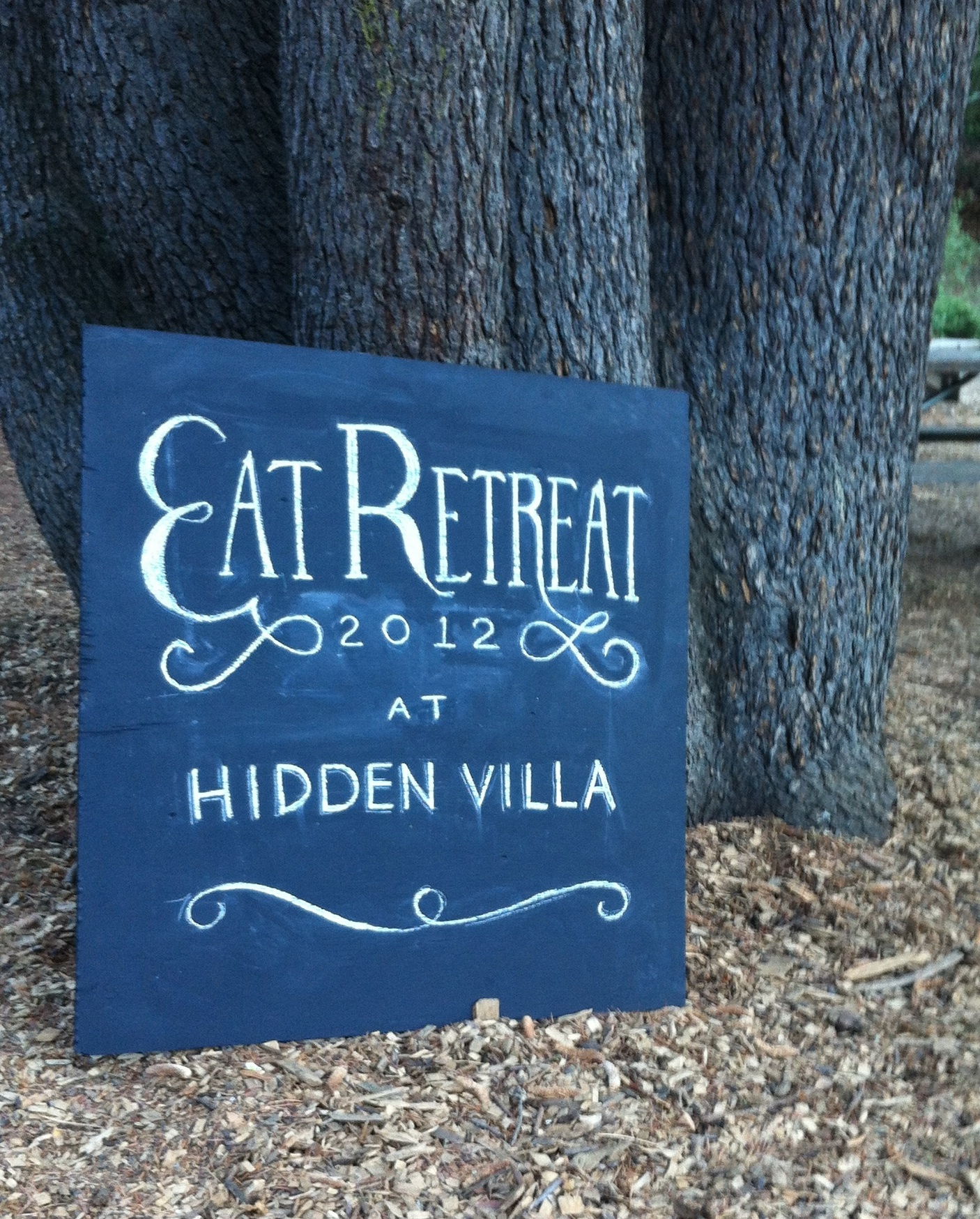 Eat Retreat: Overnight Camp for Food Lovers